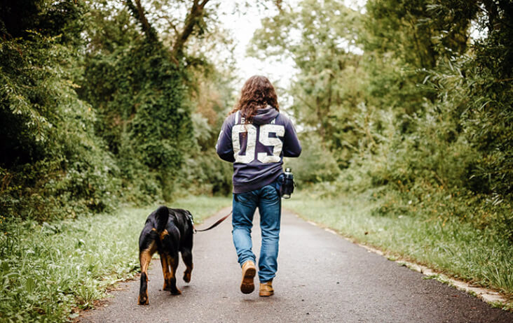 Top Tips To Calm Dogs On Bonfire Night. A man walking his dog through the woods.