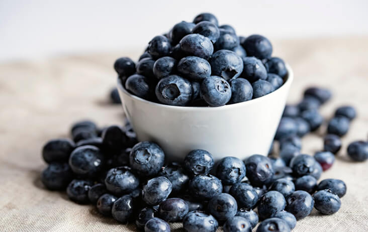 The Best Foods To Calm A Dog For Bonfire Night, Blueberries