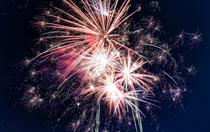 4 Reasons Why Dogs Get Scared On Bonfire Night: Fireworks in night sky.