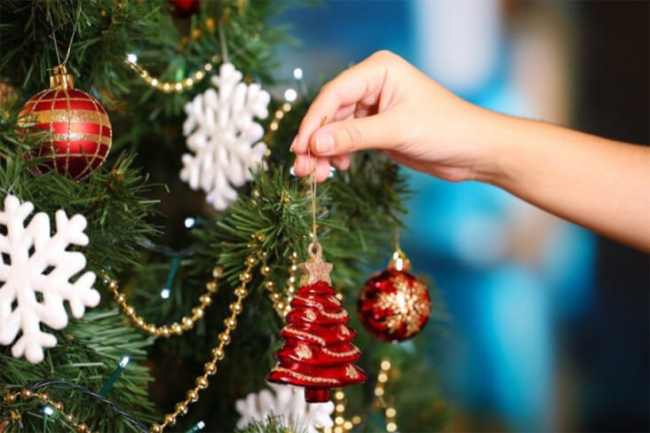 How To Have A Cracking Christmas With Your Furry Friend: Decorating The Tree